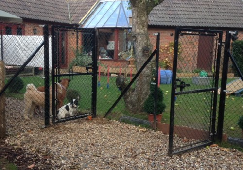 Dog and animal enclosures Beaconsfield