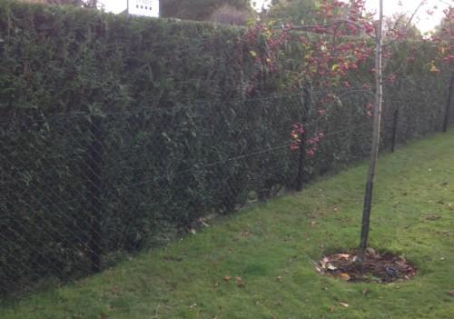 Chain link fencing Aylesbury